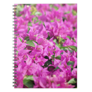flores rosadas cuaderno