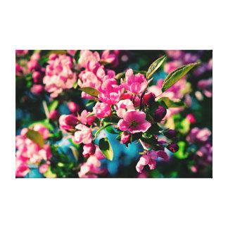 Flores rosadas de Apple de cangrejo Impresión En Lienzo
