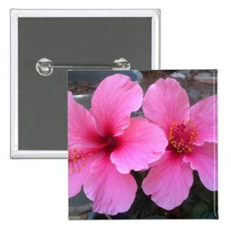 Flores rosadas del hibisco pins