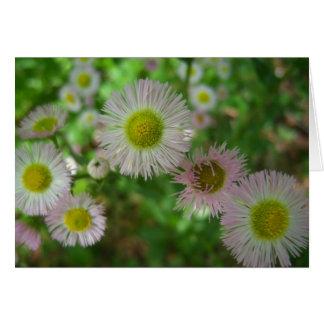 Flores rosadas - feliz cumpleaños tarjeta de felicitación