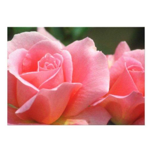 Flores rosadas perfectas rosadas comunicado