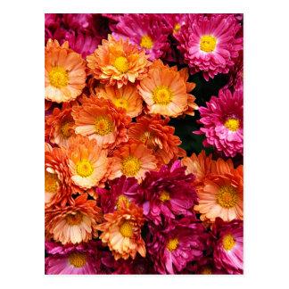 Flores rosadas y anaranjadas decorativas postal