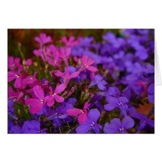 Flores rosadas y violetas polvorientas tarjeta de felicitación