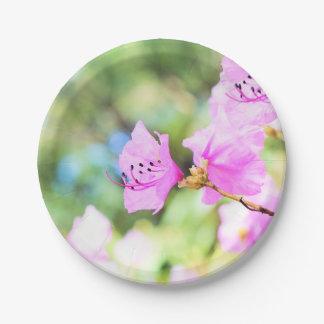 Flores rosados de la primavera plato de papel