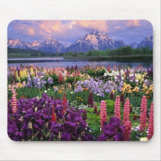 Flores salvajes de la montaña alfombrilla de raton