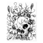 Flores salvajes tarjeta postal