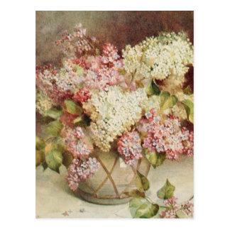 Flores Tarjetas Postales
