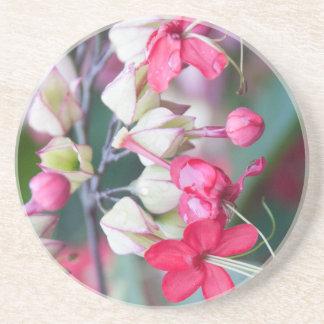 Flores tropicales rosadas y blancas rojas posavasos de arenisca
