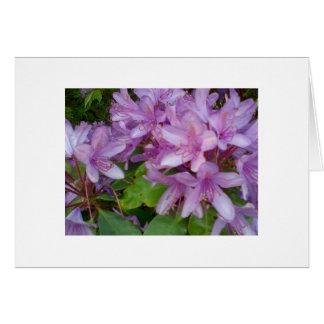 Flores violetas tarjeta de felicitación