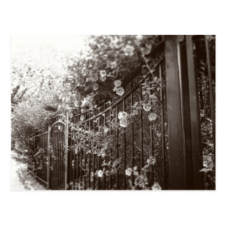 Flores y cerca del hierro labrado, postal