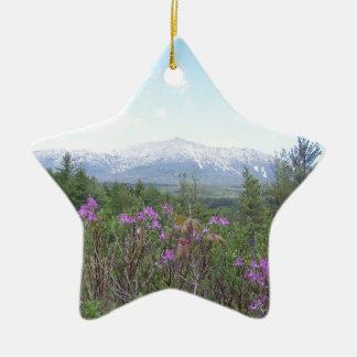 Flores y la montaña adorno navideño de cerámica en forma de estrella