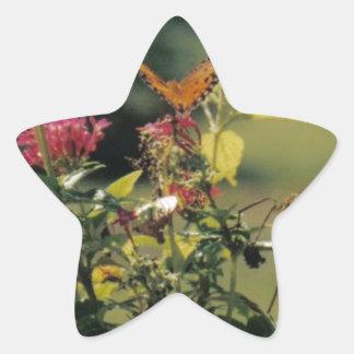 Flores y mariposa anaranjada calcomanías forma de estrellas