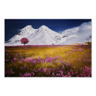 Flores y montañas rosadas de las montañas Nevado Póster