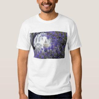 Flores y una lámpara mágica camiseta