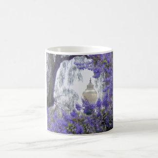 Flores y una lámpara mágica tazas