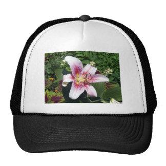 flower#3 gorras