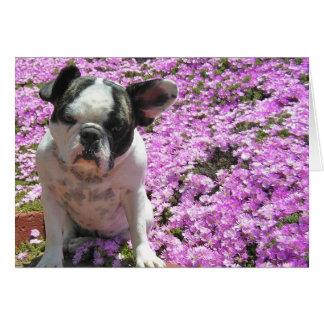 Flower power del dogo francés tarjeta de felicitación
