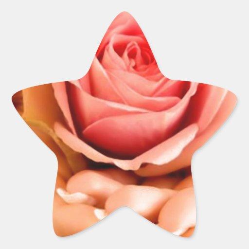 flowers.jpg color de rosa pegatinas forma de estrellaes