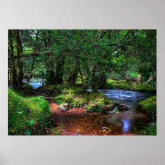 Fluye reservado el río impresiones