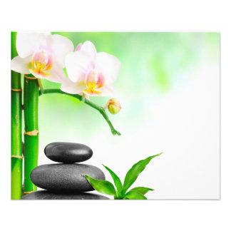 Flyer Aviador del masaje de la belleza de la salud del