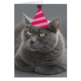 Foco ruso de la tarjeta de cumpleaños del gato