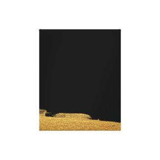 Fondo abstracto de oro del negro de la pintura impresión en lienzo