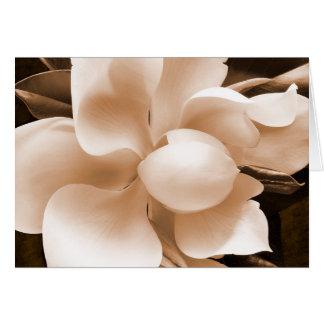 Fondo blanco del negro de la sepia de la flor de tarjeta de felicitación