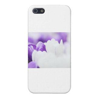 Fondo de la flor púrpura y blanca iPhone 5 carcasas