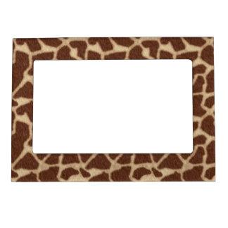 Fondo de la piel del modelo de la jirafa marcos magnéticos para fotos