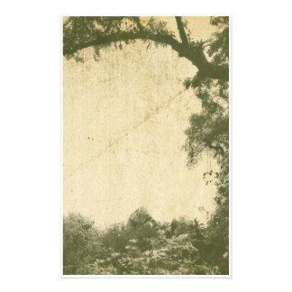 Fondo del árbol del vintage papelería