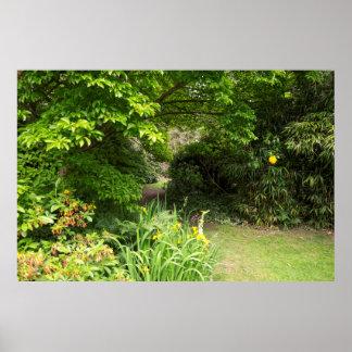 Fondo del jardín póster