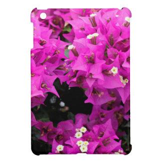Fondo fucsia púrpura del Bougainvillea