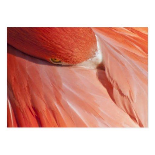 Fondo rosado de la tarjeta de visita del flamenco