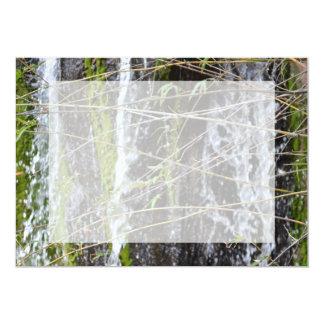 fondo verde de la planta de las ramitas del musgo comunicado personal