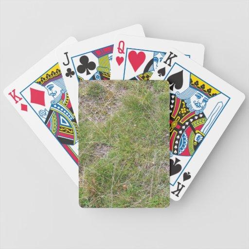 Fondo verde salvaje del trébol cartas de juego