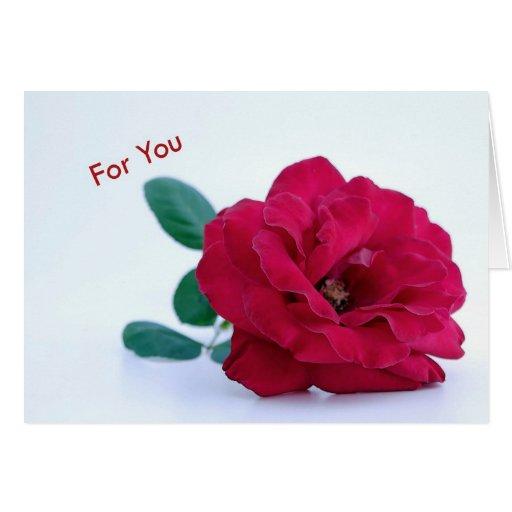 For You Greeting Card Felicitaciones