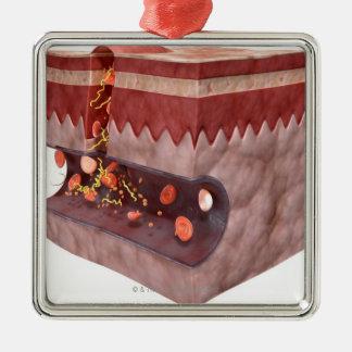 Formación del coágulo de sangre adorno navideño cuadrado de metal