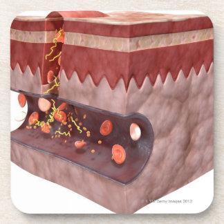 Formación del coágulo de sangre posavasos de bebidas