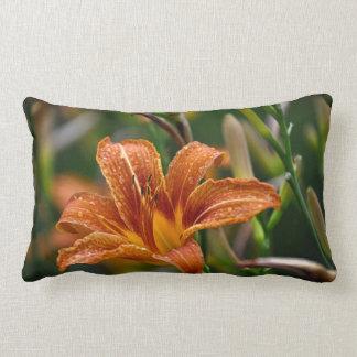 Foto anaranjada del Daylily y de la flor de las Cojines