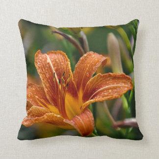 Foto anaranjada del Daylily y de la flor de las go
