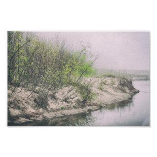 Foto Árboles el lago Michigan de la primavera de las
