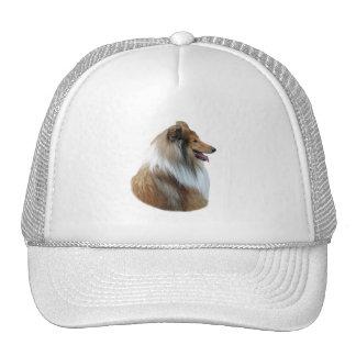 Foto áspera del retrato del perro del collie gorras de camionero