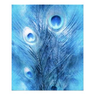 Foto Azul de pavo real
