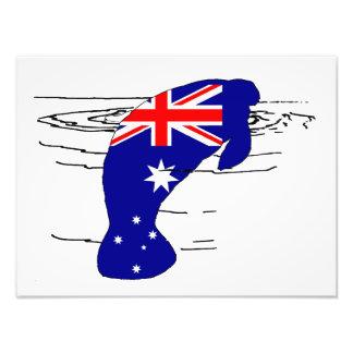 Foto Bandera australiana - Manatee