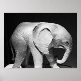 Foto blanco y negro del elefante póster