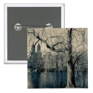 Foto blanco y negro del paisaje pins
