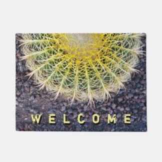 Foto botánica de las agujas del cactus del globo