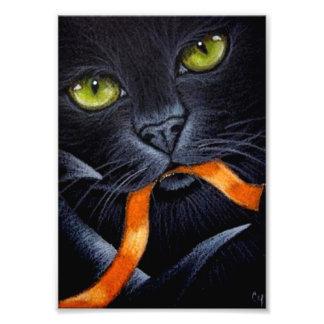 FOTO CAT NEGRO DE HALLOWEEN CON LA IMPRESIÓN ANARANJADA