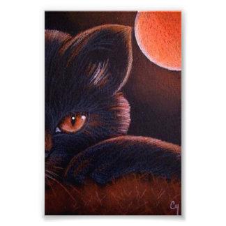 """FOTO CAT NEGRO DE HALLOWEEN CON LA LUNA ANARANJADA 4"""" X"""