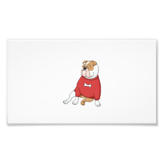 Foto chillin del dogo en dibujo animado del suéter